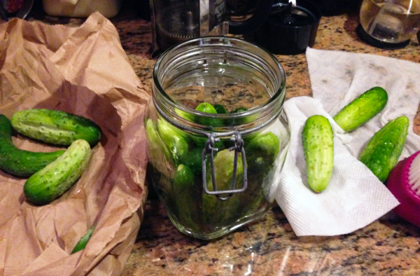 Half-Sour, Whole-Delicious Refrigerator Pickles