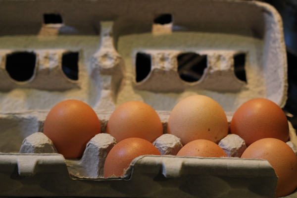 Tried and True Egg Substitutes | The Fresh Day